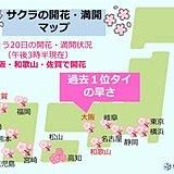 大阪で桜開花 過去1位タイの早さ