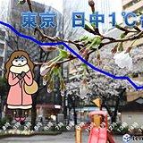 春分の日 冷蔵庫のよう 東京1度台