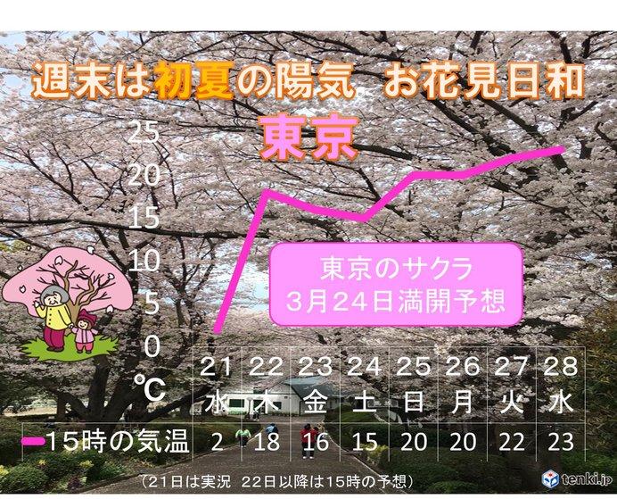 あす東京18度 週末は初夏で満開予想