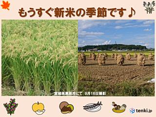 稲刈りシーズン 3連休の天気 東北