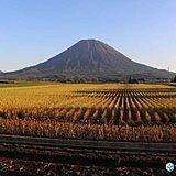 北海道 近づく秋と今週の天気