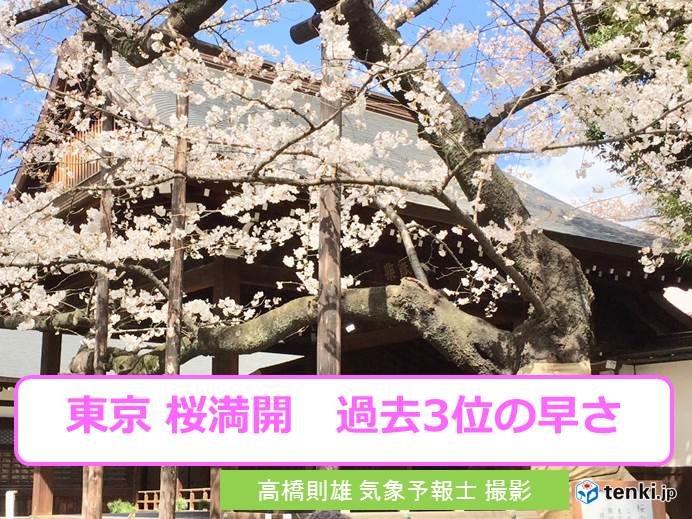 東京 桜満開 過去3位の早さ