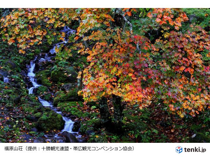 北海道 3週間ぶりに行楽日和の週末