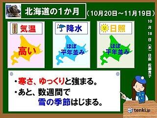 北海道1か月 秋が終わり、冬がはじまる