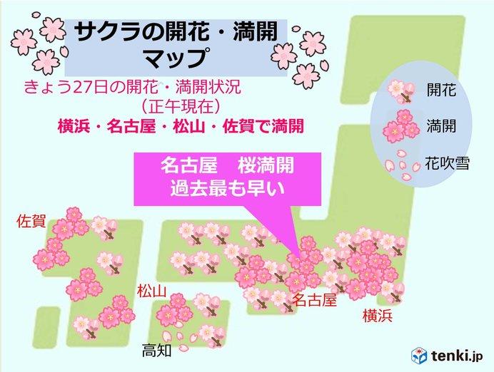 名古屋で桜満開 過去最も早く