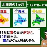 北海道の1か月 雪の日が少ない