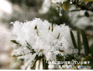 今季初の真冬日か 気温0度に届かず