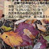 近畿地方22日に木枯らし1号が吹きました