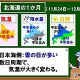 北海道の1か月 雪の日が多い