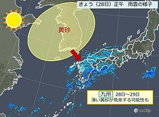 サザンカ梅雨のあとは… 九州