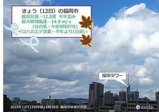 北風と落ち葉の季節 福岡