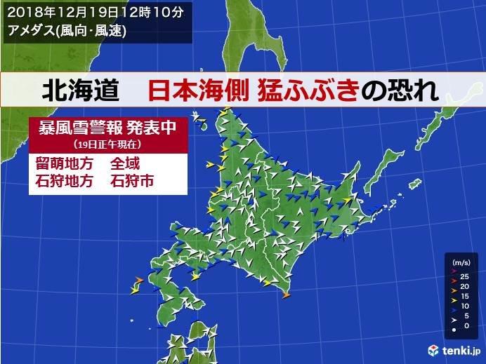北海道 日本海側 猛ふぶきに警戒