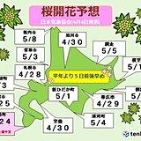 北海道 桜いつ咲く?最新予報!