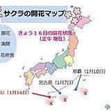 季節の進み順調 沖縄で次々にサクラ咲く