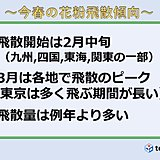 日本気象協会 2019花粉飛散予測 3報