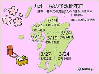 九州 2019年桜の開花予想発表