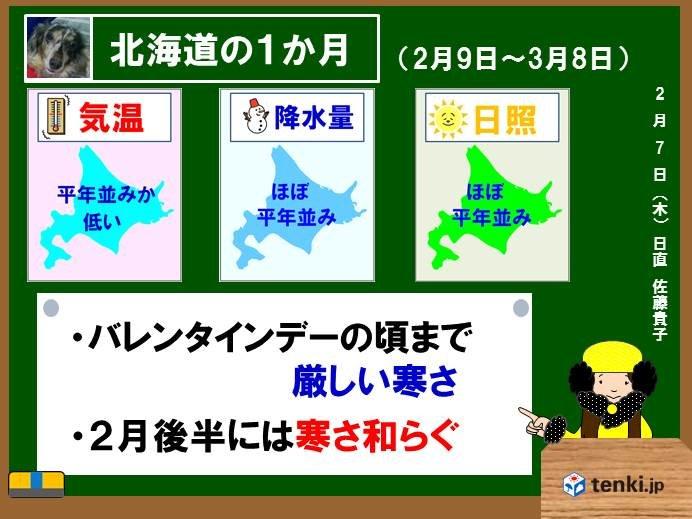 北海道の1か月 2月後半は寒さやわらぐ