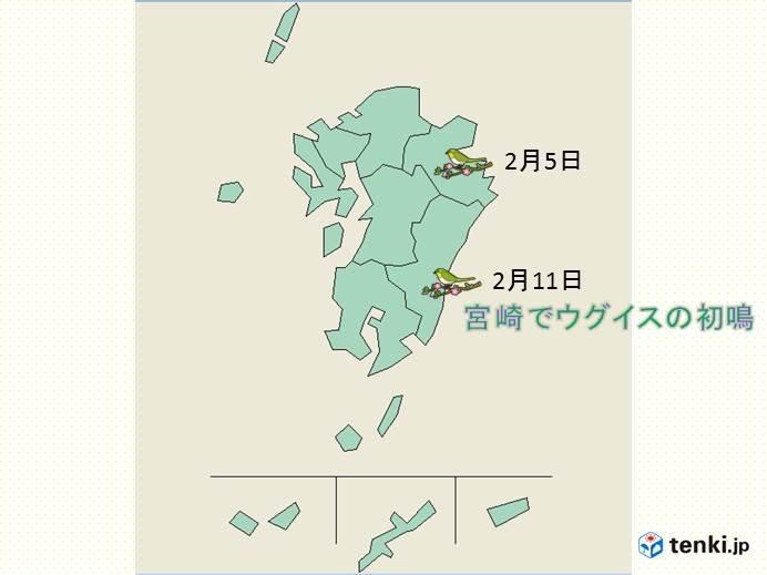 宮崎でウグイス初鳴 平年より14日早い