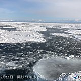 北海道 今週は流氷に出会えるチャンス!