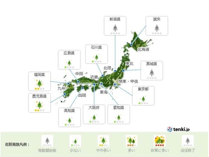 きょうの花粉の飛散 九州でやや多い予想