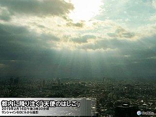 東京 日差し降り注ぐ 温もりある陽気に
