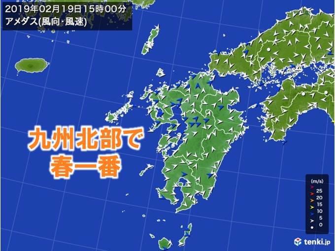 九州北部地方で春一番が吹きました