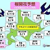 北海道 桜前線上陸まで2週間きる!