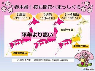 春本番へまっしぐら 桜前線も順調に 1か月