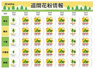 関東の花粉 連日「非常に多い」 ツライ一週間に