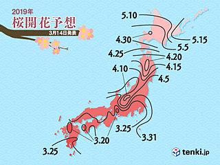 桜前線 来週スタート 東京も 日本気象協会発表