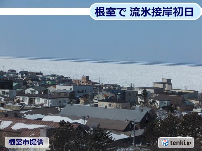 北海道 根室で流氷接岸初日 土日は再び雪積もる
