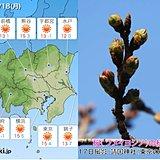 18日 関東 安定した晴天 心地よい春の日差し