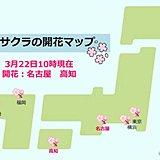 名古屋と高知で桜が開花 東海と四国で初