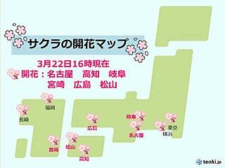 桜が続々と開花 広島や松山、宮崎でも