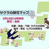 寒の戻りとなった日本列島 でも春の便り届いた