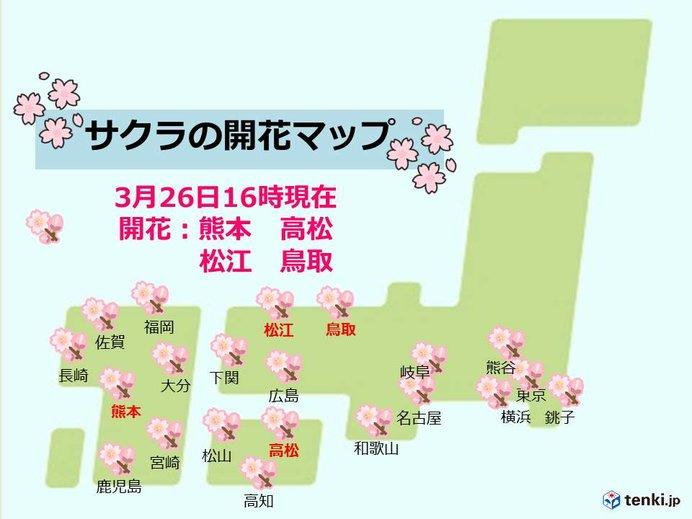 桜開花の便り続々 北から南まで4月並みの陽気