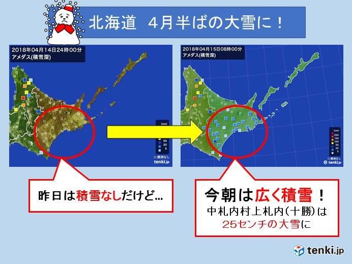 北海道 2年に1度の大雪に