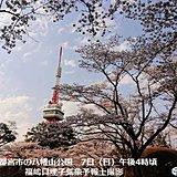 関東の桜(ソメイヨシノ)すべて満開 宇都宮も
