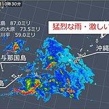 沖縄 猛烈な雨や激しい雨 落雷も多数