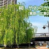 関東21日 霞みの空 快適な一日