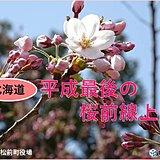 平成最後の桜前線 北海道に上陸!