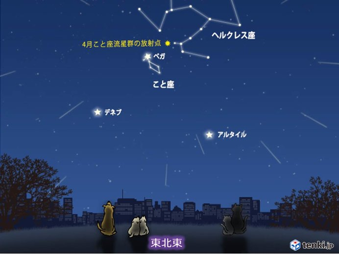 4月こと座流星群が見頃に 今夜遅くからあす明け方