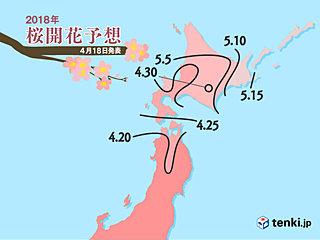 桜前線 急加速で北上 日本気象協会発表