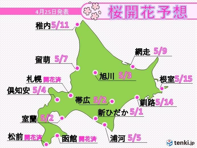 北海道 あすから湿り雪が積もる 桜はGWに続々開花