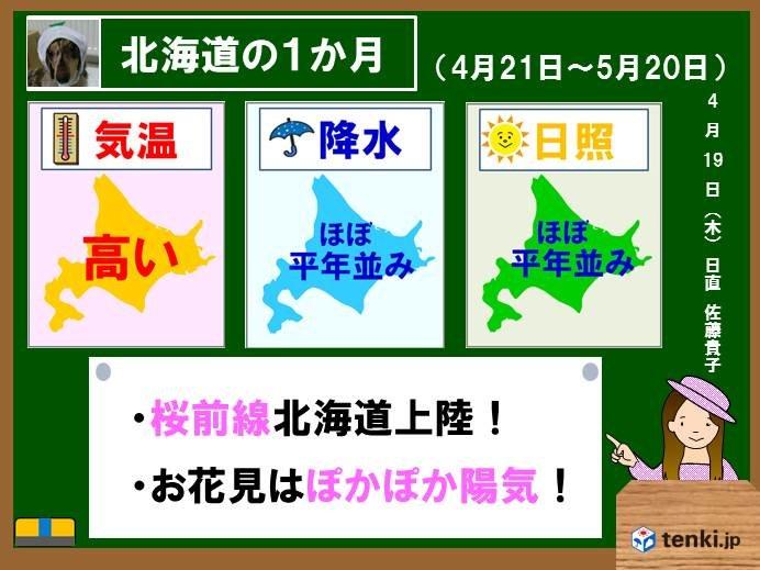 北海道の1か月 ぽかぽか桜日和