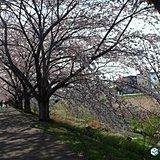 北海道 大型連休5月からの天気