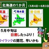 北海道1か月 気温は高め、日差しはたっぷり