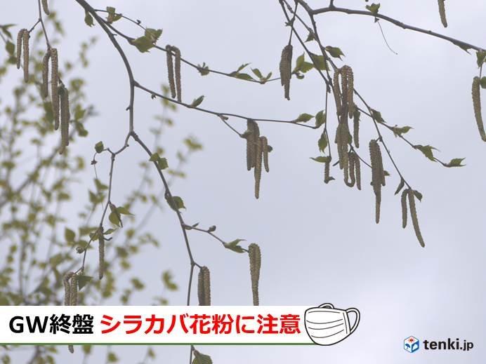 北海道 行楽日和戻るも花粉に注意!!
