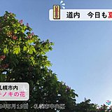 北海道 真夏並みの暑さも