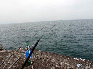 北海道 春のカレイ釣り